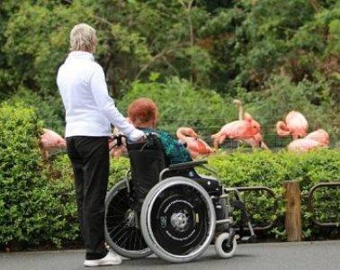 výlety handicap